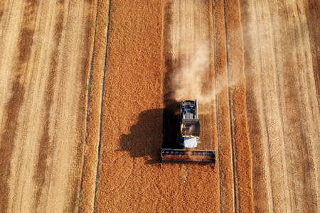 Summer view of combine harvester machine, in the romanian fields. Aerial view of harvesters Stock fotó
