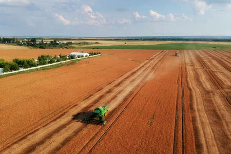 Summer view of combine harvester machine, in the romanian fields. Aerial view of harvesters 免版税图像