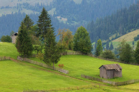 Summer landscape at sunrise, in Bucovina Imagens - 107258645