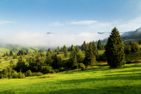 Summer landscape at sunrise, in Bucovina Imagens - 107258653