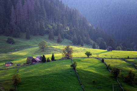 Summer landscape at sunrise, in Bucovina