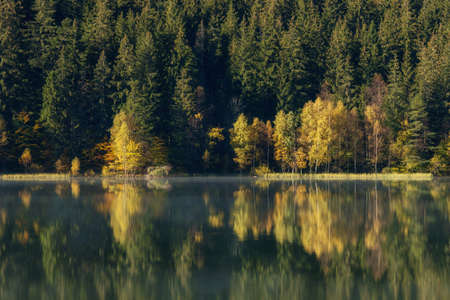 Autumn landscape of the colorful forest, at the mountain lake edge, with beautiful reflexions Banco de Imagens