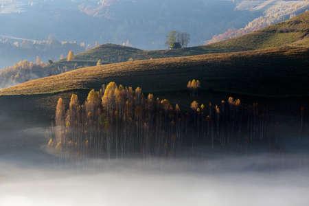 Beautiful landscape in autumn colors, at sunrise 写真素材