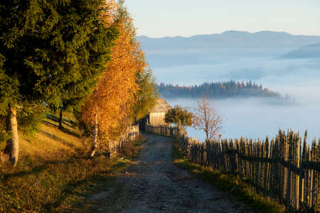 Countryside road in Bucovina, at sunrise