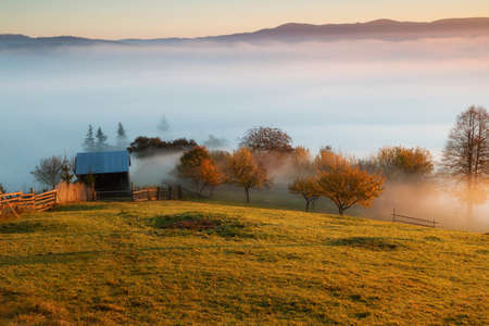 Foggy morning in Bucovina. Autumn colorful landscape in the romanian village 스톡 콘텐츠 - 116785887