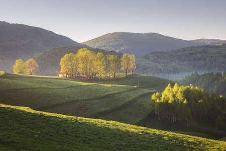 Lever du soleil d'été à la lisière de la forêt, en Transylvanie Banque d'images