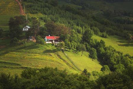 Belles collines verdoyantes d'été en Transylvanie. Paysage de lever de soleil dans le village de montagne roumain Banque d'images