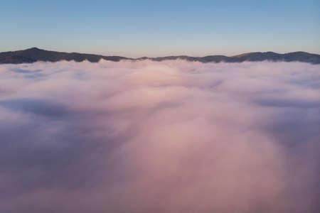 Summer aerial landscape above the fog