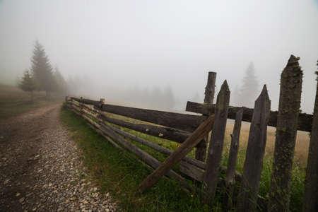 Summer foggy morning in Bucovina Фото со стока
