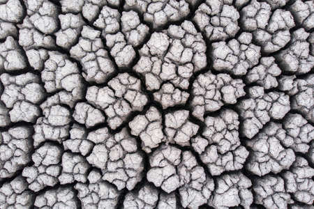 Crackled earth texture of dry lake Stockfoto