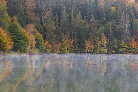 Autumn landscape at St. Ana Lake, in the heart of Transylvania, Romania Imagens