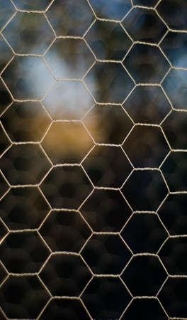 mesh Stock Photo - 17074534