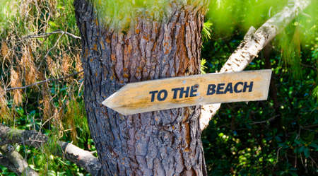 beach access: To the beach sign on a tropical tree Stock Photo
