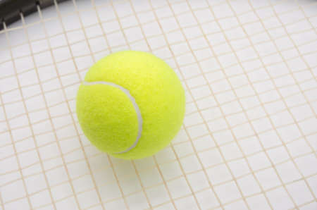 raquet: Tennis ball on a raquet in a close look