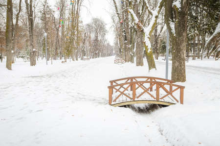 no snow: Cluj-Napoca central park during winter with a bridge in focus and snow and ice everywhere and trees with no leafs in a cold view Stock Photo