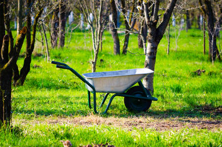 Wheelbarrow in a green rural garden with fruit trees all around ona sunny spring day with fresh green grass suggestiong gardening tools and equipment
