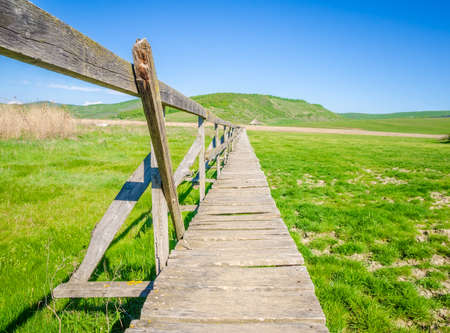An old wooden bridge path suspended over dry marshlands and heading straight forward to a reed reservation on a sunny summer day