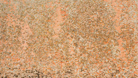 restauration: Large scale orange shingle texture with rounded ancient shingles on a giant roof structure Stock Photo
