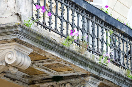 Flowers growing ou of an old abandoned degraded baroque balcony suggesting the power of life and nature in a historic concept