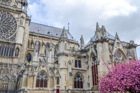 Südfassadendetail Notre Dame de Paris mit den fliegenden Strebepfeilern und Rosettenfenstern auf dieser schönen gotischen Kathedrale an einem sonnigen Frühlingstag in Frankreich Standard-Bild
