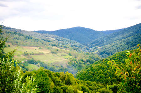 Peaceful landscape in the Transylvanian mountains with fresh green trees in this beautiful Romanian region Stock Photo
