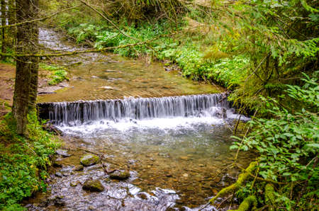 Running stream with clean water in a fresh green untouched forest somwhere in Romania Stock Photo