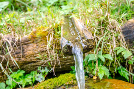 Water spring from a wood spout with fresh green plants on the background in a natural untouched area