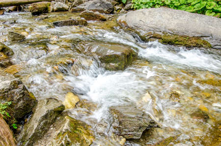 River flowing through rocks and stones in a fresh green well preseved natural area in a close view