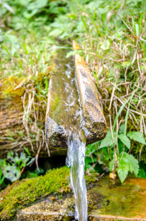 Pure crystal clean mineral water pouring through a wood spout from a sping in the fresh green area Stock Photo