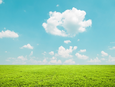 green field: Beautiful green field and blue sky - natural landscape view