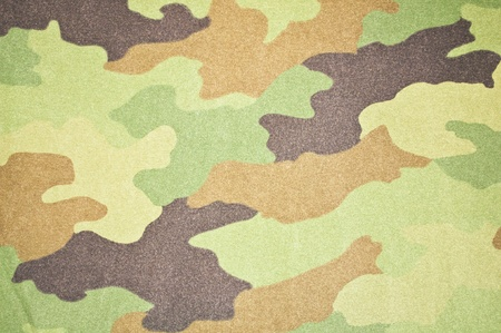 Camouflage Army colors photo