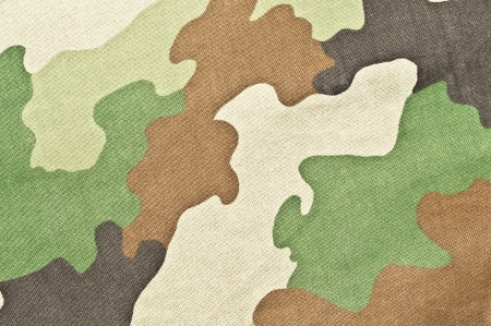 concealment: Army texture