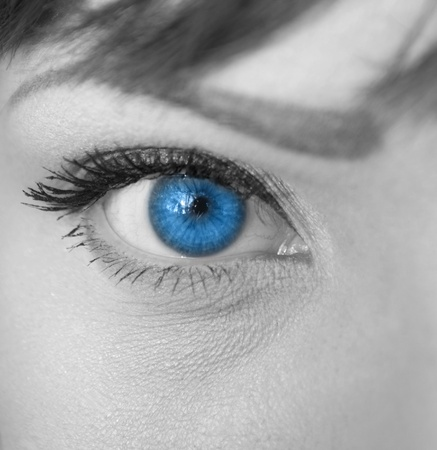 Woman blue eye macro photo