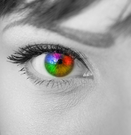 Multicolored eye macro shot photo