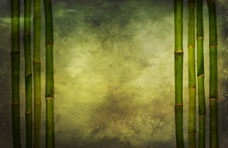 Bamboo grunge background photo