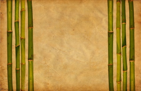 Grunge bamboo and paper background photo