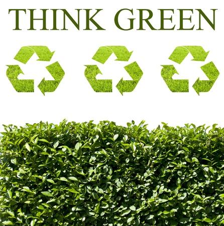 think green: Piense en concepto de ecolog�a verde