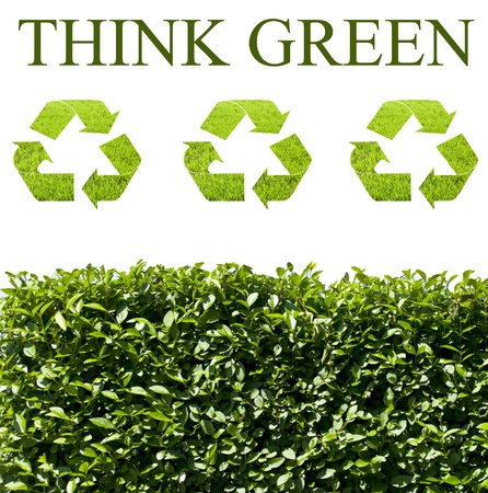 eco energy: Think green ecology concept Stock Photo