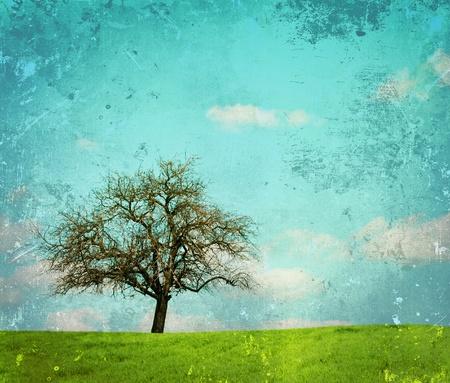 Vintage image of landscape with oak tree photo