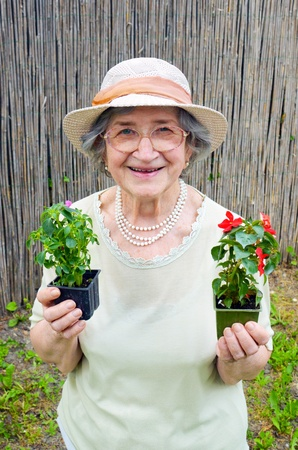 landlady: Happy senior woman holding flowers in garden Stock Photo