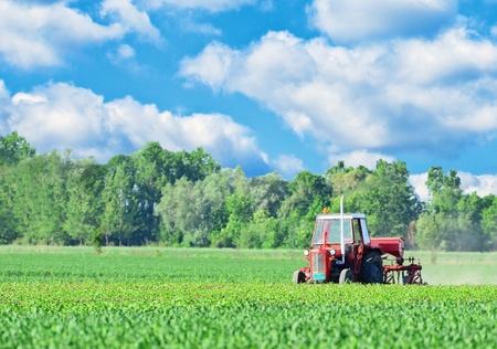 haulm: Tractor on beautiful landscape
