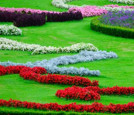 schloss schonbrunn: Beautiful flower garden in Schonbrunn palace - Vienna Austria