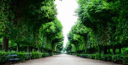 Beautiful park at Schonbrunn palace in Vienna Austria