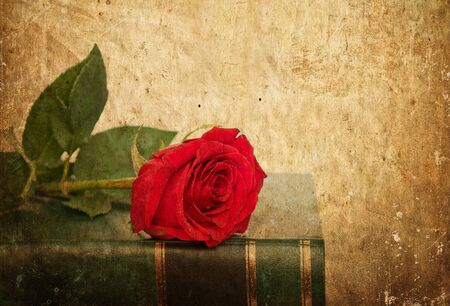 Rose on book in vintage style Stock Photo - 15686459