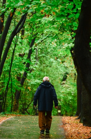 Senior man walking in forest Stock Photo - 15918581