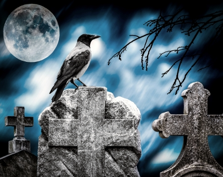 stone tombstone: Crow sitting on a gravestone in moonlight at cemetery