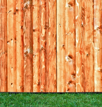 Fresh spring green grass over wood fence background  photo