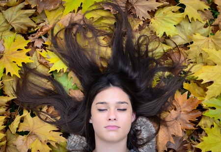 Portrait of beautiful brunette woman lying on maple leaves photo