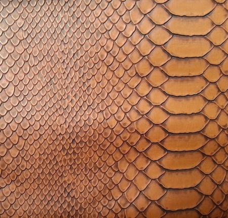 Brown snake skin texture photo