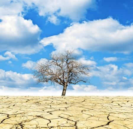 Global Warming conceptual image